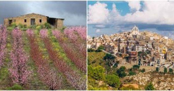 1 Euro'ya Ev Sahibi Olmak İsteyenlerin Yeni Adresi : Binova Kasabası