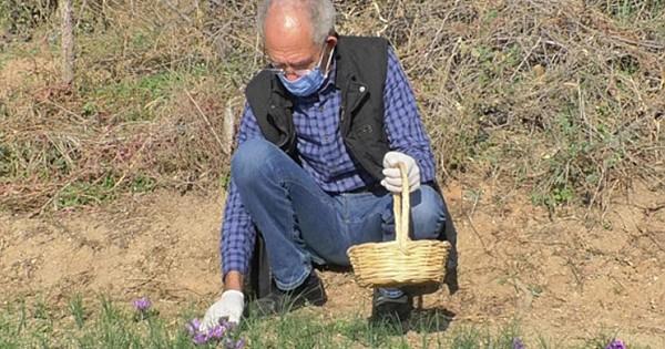 Emekli Olduktan Sonra Ekti Parayı Tarımda Buldu
