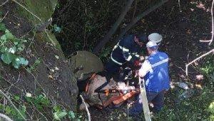 25 metrelik çukura düşen inek vinçle kurtarıldı