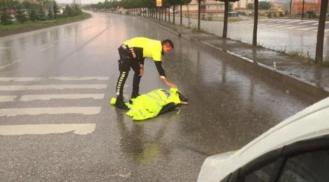 Polis memuru, montuyla yaralı köpeği yağmurdan korudu