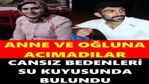 Kars'a ev almaya gelen kadın ve oğlunun cansız bedenleri su kuyusunda bulundu