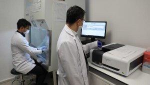 """Bartın Üniversitesinde """"3CLpro"""" enzimi üretildi"""