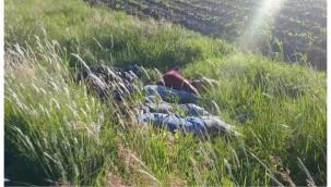Yol kenarına atılmış 7 erkek cesedi bulundu