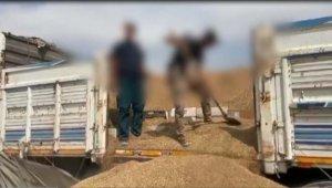 Arpa yüklü kamyonda 37 bin 500 paket kaçak sigara bulundu