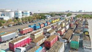 Konya Şeker, fireli 3 milyon 600 bin ton pancar işleyecek