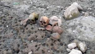 Suyu boşaltılan göletten 4 kafatası ile kemikler çıktı