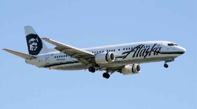 Alaska'da uçak, iniş sırasında boz ayıya çarptı