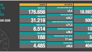 Koronavirüs salgınında can kaybı 13bin 746'yayükseldi
