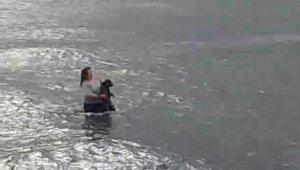 Veteriner hekim, kıyafetleriyle denize girip, soğuk suda şoka giren köpeği kurtardı