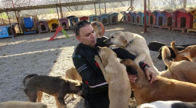 Hayvansever Sert, el konulan köpeklerine kavuştu