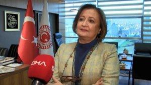 TBMM Dilekçe Komisyonu'nda, yurt dışındaki Türk çocuklar için çalışma