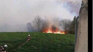Trabzon'da orman yangını, alevlere müdahale ediliyor