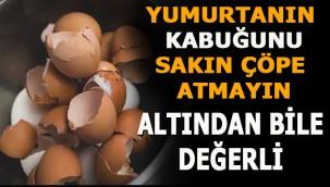 Yumurta kabuğunun bu marifetleri şaşırtacak altından bile değerli