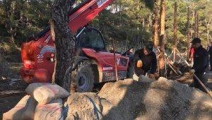 Kısıtlamada, dünyaca ünlü koyda 'kaçak inşaat' çalışması yapanlara 63 bin TL ceza
