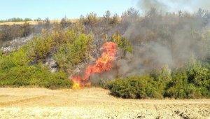 Adana'nın 2 ilçesinde orman yangını