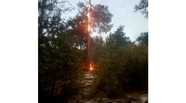 Marmaris'te düşen yıldırım yangın çıkardı